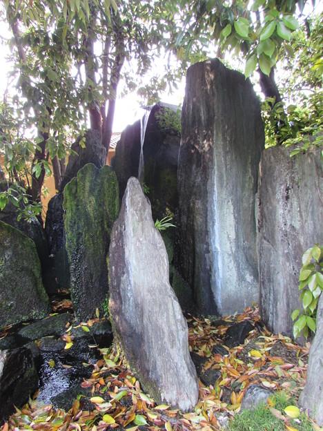 松尾大社・蓬莱の庭 078