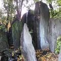 Photos: 松尾大社・蓬莱の庭 078