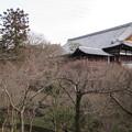 Photos: 東福寺・方丈