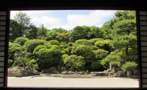 金地院・鶴亀の庭園1