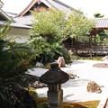 写真: 承天閣美術館・前庭