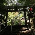 猿丸神社・表参道2