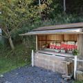 Photos: お地蔵さん1