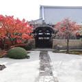 妙顕寺・客殿前庭1