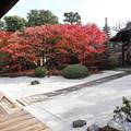 写真: 妙顕寺・客殿前庭2