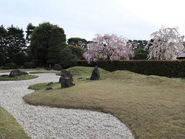 城南宮・城南離宮の庭4