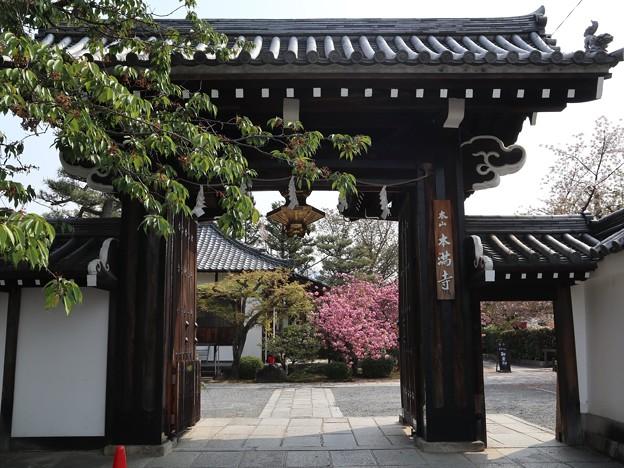 本満寺・山門1