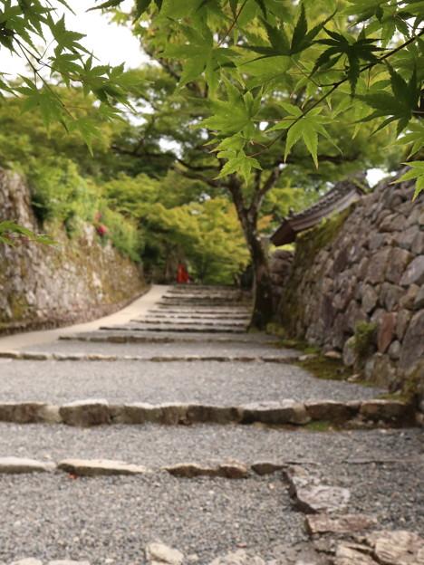 京都~大原 三千院♪