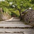 Photos: 京都~大原 三千院♪