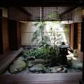 Photos: 吉田家・中庭2