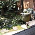 Photos: 吉田家・奥庭2