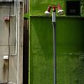 写真: 壁と配管