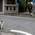 Photos: 神社の前で