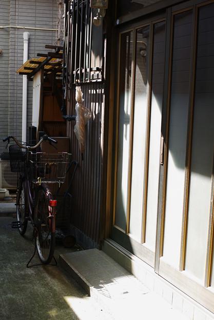 玄関横の傘