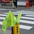 Photos: 横断中