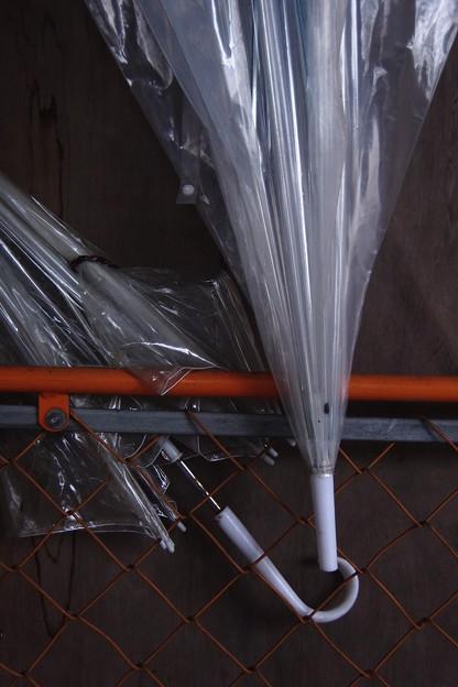 Photos: 2本の傘
