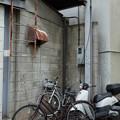 Photos: 角地