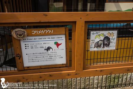oouchiyama1507120004