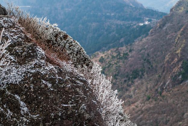普賢岳の霧氷