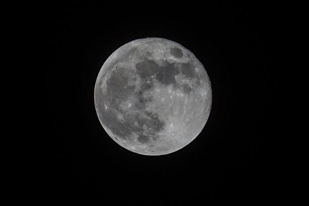 今月の満月
