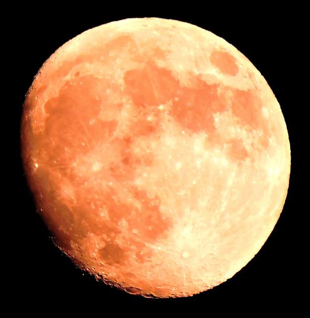 晩秋の月・・1 十三夜   10:25  (17:40)