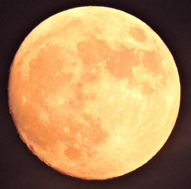 晩秋の月・・2 小望月   10:26    (17:08)