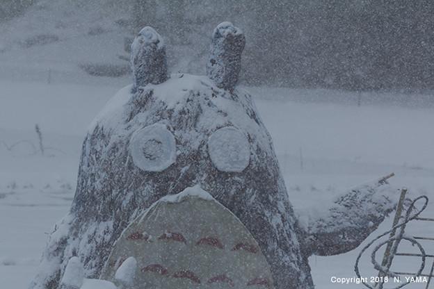 宝達トトロの冬
