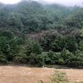 Photos: 2018年9月8日、嵯峨野観光鉄道風景