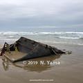 Photos: 漂着した木造船