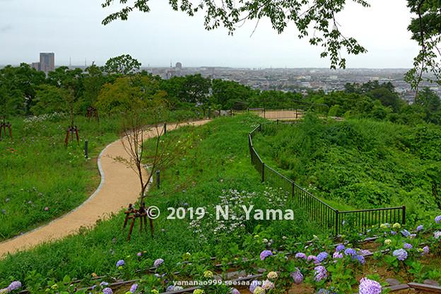 卯辰山 眺望の丘