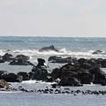 1.長崎町海岸の岩礁-A