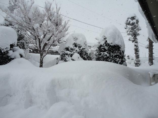 2018/01/27雪3