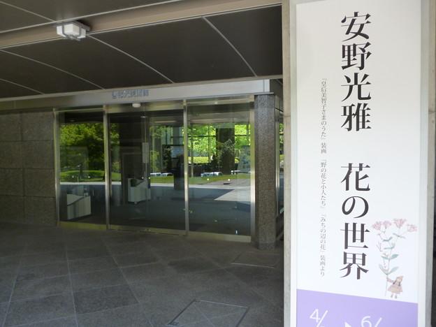 写真: 2018/06/17安野光雅展