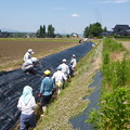 写真: 2018/06/24環境保全会活動3