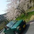 奥出雲の桜