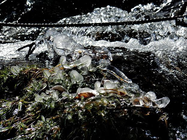 Photos: 自然の造形
