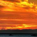 写真: 釧路の燃える空