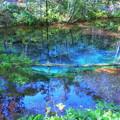 写真: 神の子池1