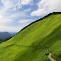 写真: 曽爾高原2