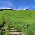 写真: 曽爾高原4