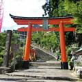 写真: 熊野那智大社