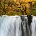 写真: 銚子大滝