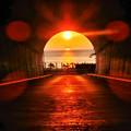 Photos: 光の通り道