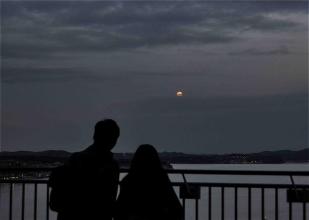 写真: 月夜の二人