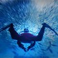 Photos: 海のサンタが大水槽を行く