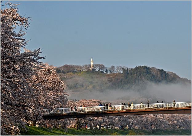 写真: 朝靄が晴れる
