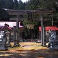 写真: 葉山神社狛犬(兎)