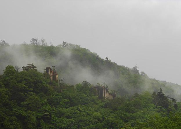 写真: 雨の朝