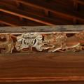 写真: 南禅寺方丈廊下