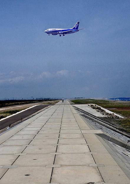 Photos: 新設防潮堤を歩く